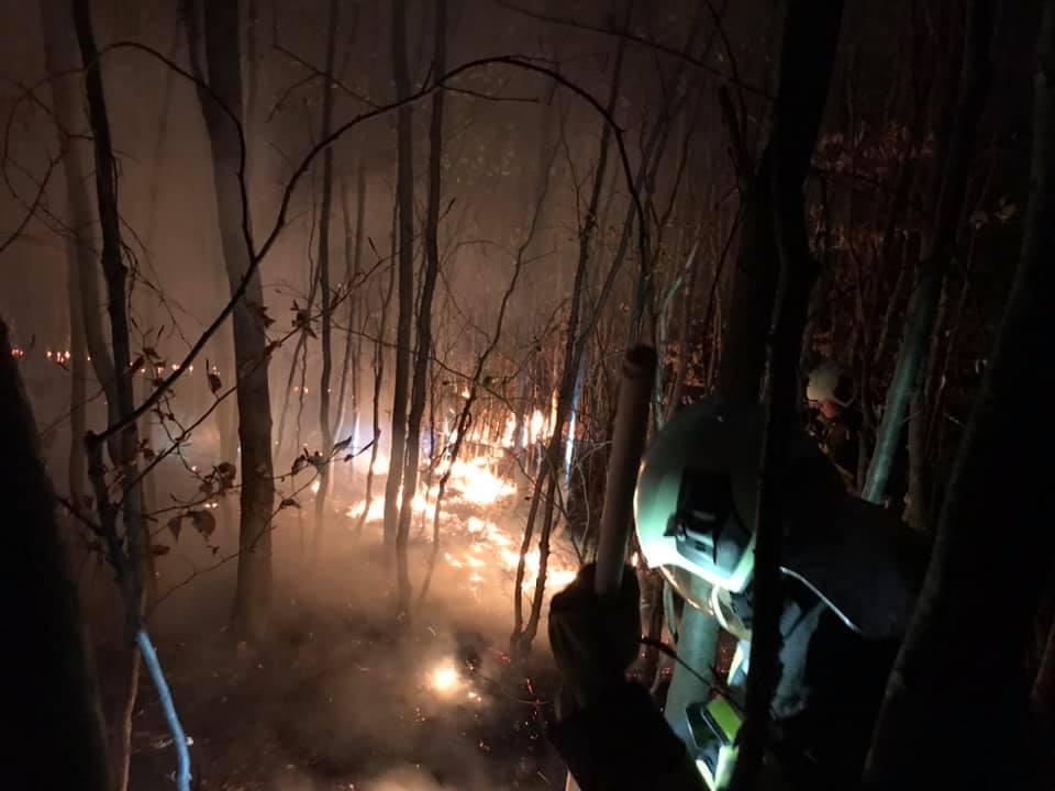 Waldbrand beim roten Kreuz